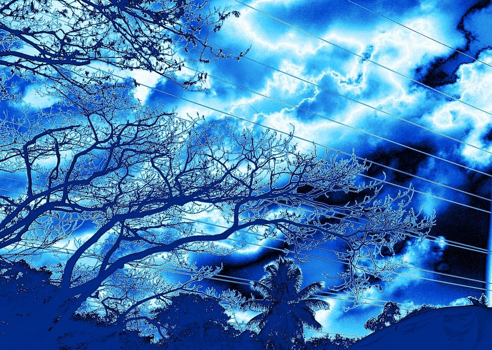 Trees of Energy